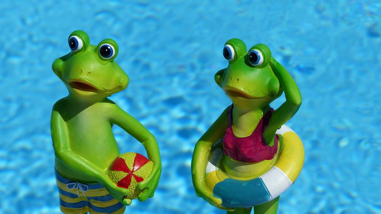 frog-830869_1280 Urlaubszeit-Reisezeit! Worauf achten?