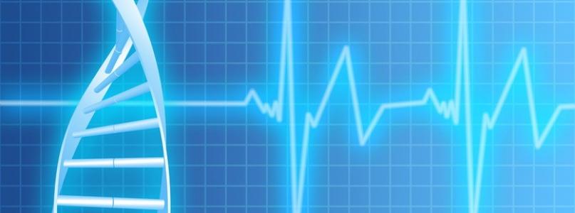 Beitragsanpassung Hallesche Krankenversicherung