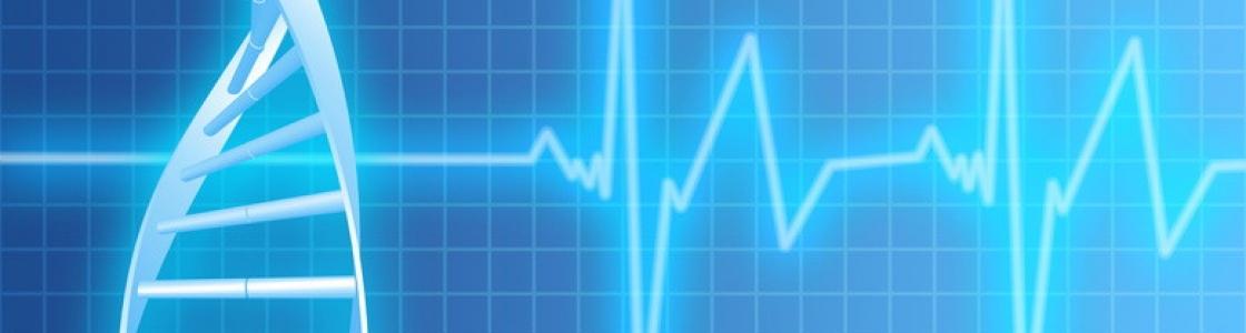 Hin zu mehr Qualität – private Krankenversicherung.